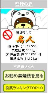555日プロフ4