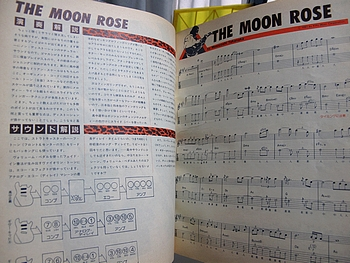THE MOON ROSE 解説