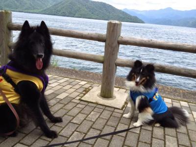 中禅寺湖で泳ぐ