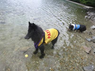 中禅寺湖で泳ぐ3
