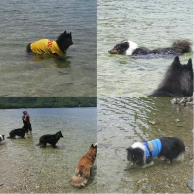 中禅寺湖で泳ぐ4
