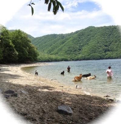 中禅寺湖で泳ぐ7