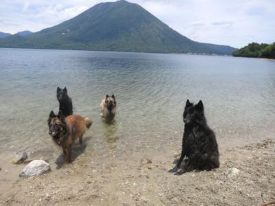 中禅寺湖で泳ぐ10