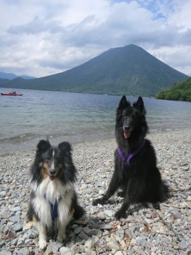 中禅寺湖で泳ぐ11