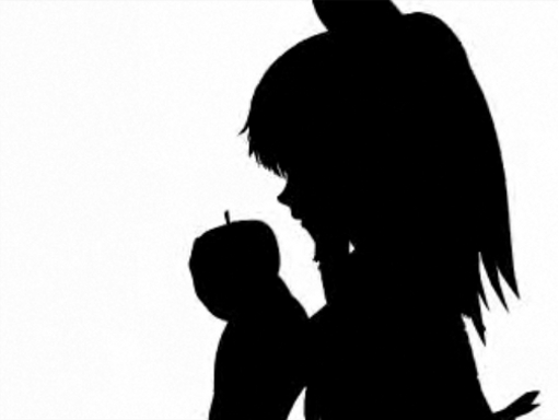 【東方】Bad Apple!! PV【影絵】