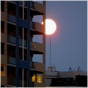 避雷針と月110814H 030
