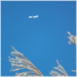 飛行機A111210H 002