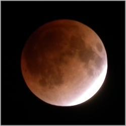 月食D111210H 064