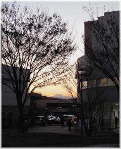 焼き鳥富士120107G 035