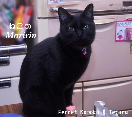 maririnchan_2011-1.jpg