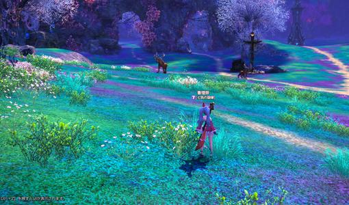 妖精の森02