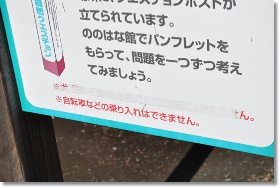 4dec10_030.jpg