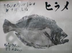 平成16年ヒラメ