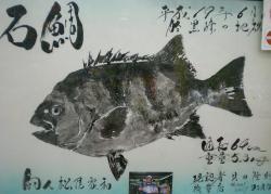 平成19年石鯛