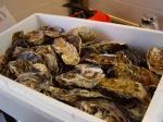 牡蠣いっぱい
