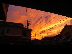 20091115_27.jpg
