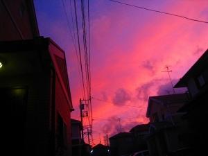 20091115_31.jpg