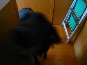 20091121_73.jpg