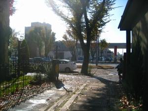 20091126_2.jpg