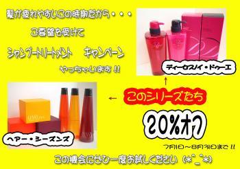 シャンプ-トリートメントキャンペーンのコピー_convert_20110630124115