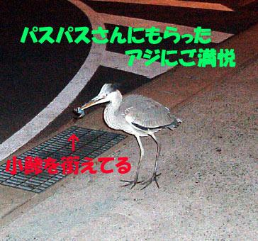 09120600403.jpg