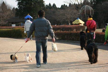散歩初め2