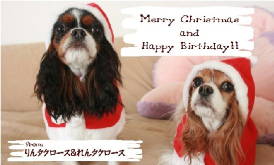 ChristmasCard2011.jpg
