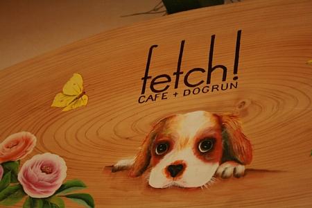 Fetch!2.jpg