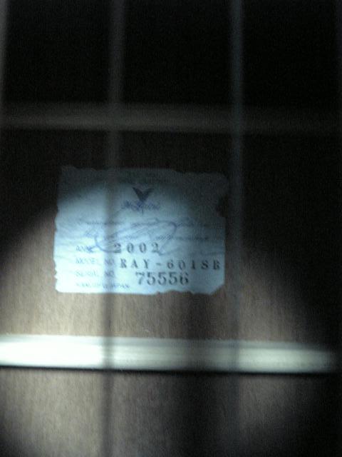 Kヤイリ RAY-601