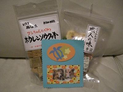 2011.5 nanamamaさんからぱっきんへ