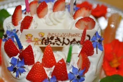 2011.5 ぱっきんの