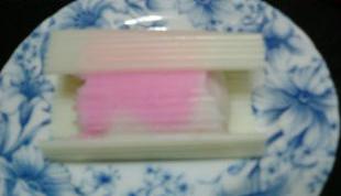 中野漁協(4)100509