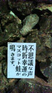 北九州旅行(18)100519