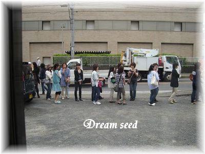 dream seed3