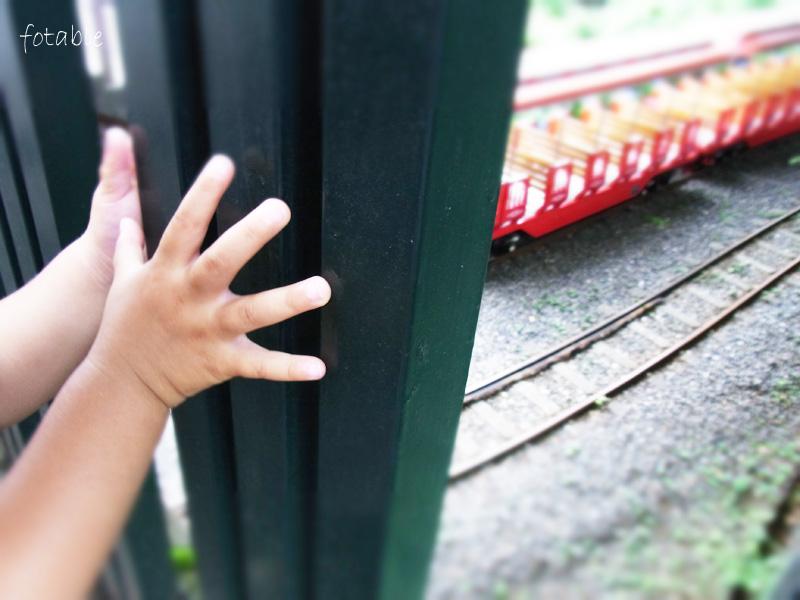 photo20100625_2.jpg