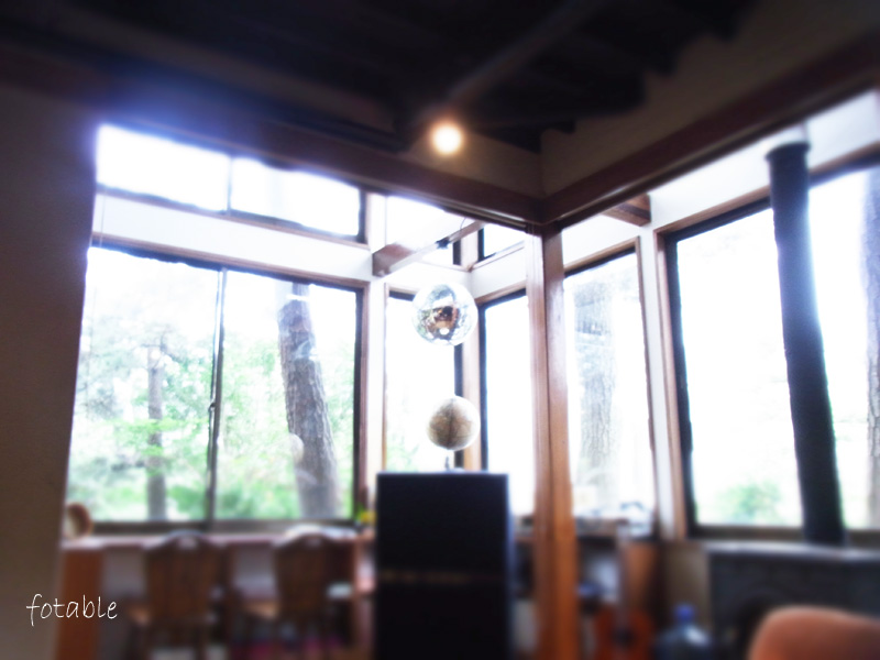 photo20100626_2.jpg