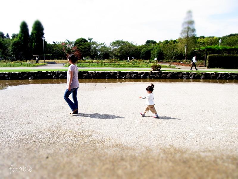 photo20101003_12.jpg