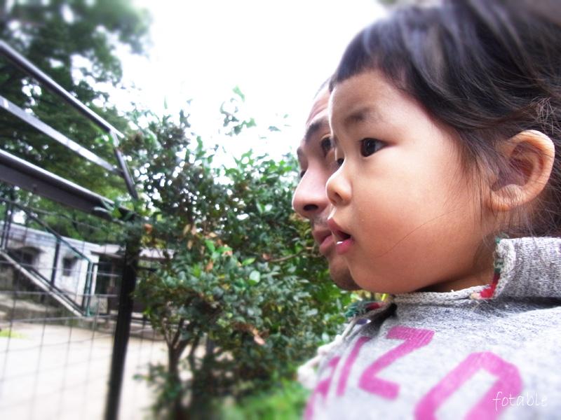 photo20101024_3.jpg