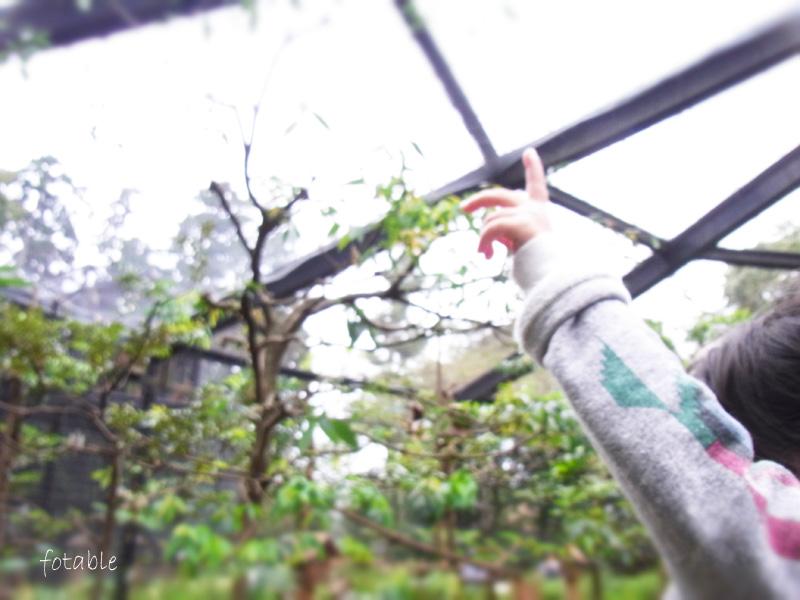 photo20101024_7.jpg