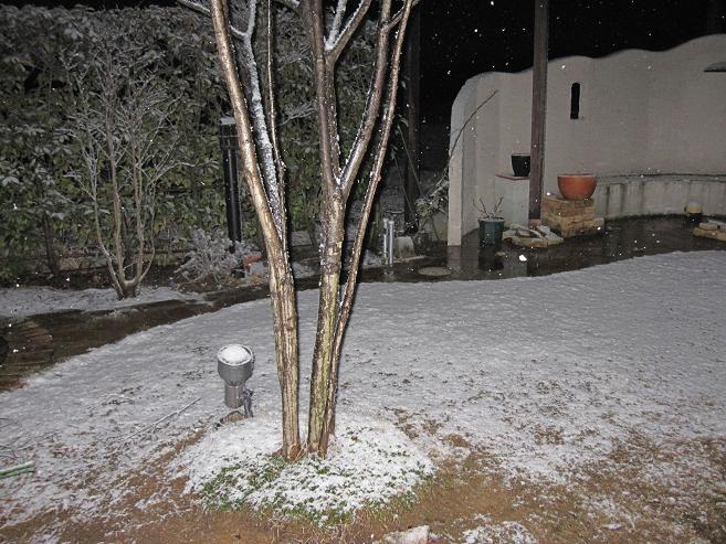 先ほどの雪景色