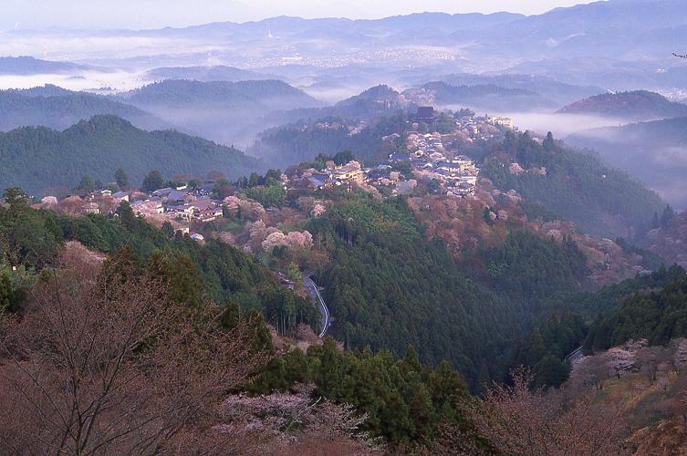 朝靄の吉野山