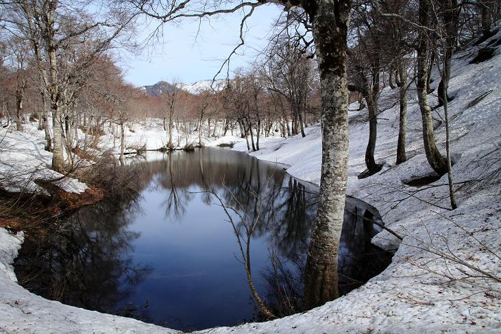 残雪の鎌池