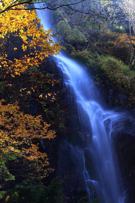 奇妙滝-1