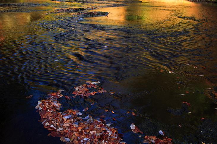 秋流れ-2