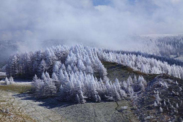霧氷-11