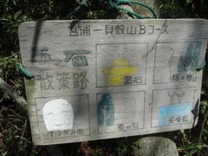 20100321貝殻山06