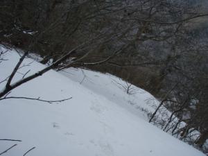 20100403甲ヶ山14