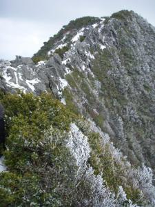 20100403甲ヶ山11