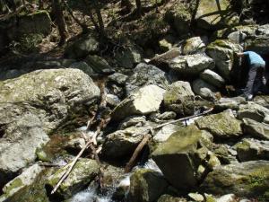 20100502白髪山04