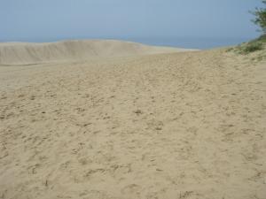 20100521鳥取砂丘2